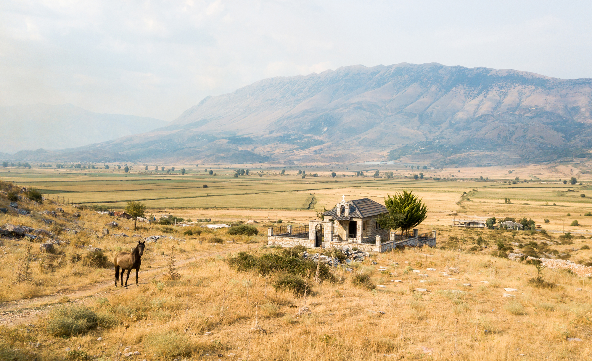 Aerial photo of a field with a horse in front in Albania.