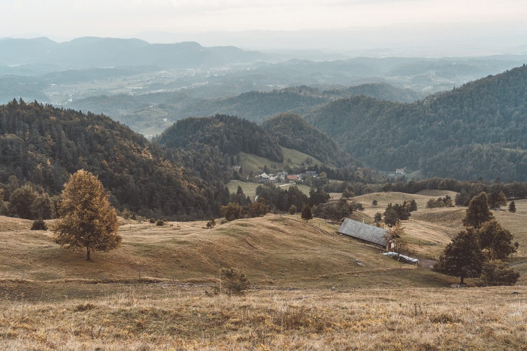 Kamniski vrh, Slovenia - September 2018: A small farm surrounded by pastures and cows.